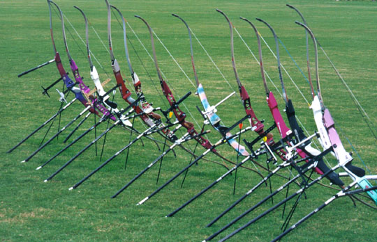 Olympic bows set up with stabilizers
